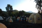 kilimanjaro-11