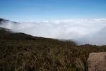 kilimanjaro-17