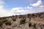 kilimanjaro-20