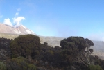 kilimanjaro-25