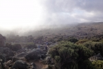 kilimanjaro-27