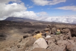 kilimanjaro-73