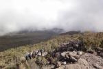 kilimanjaro-89