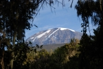 kilimanjaro-93