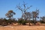 suedafrika-9